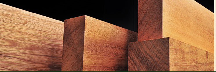 Dificuldades no aproveitamento e destinação de madeira de supressão autorizada devegetação