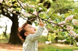 árvore-criança
