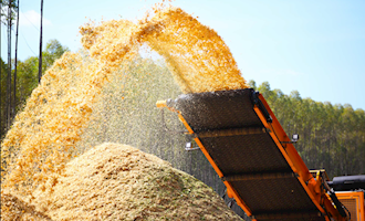 esteira-biomassa